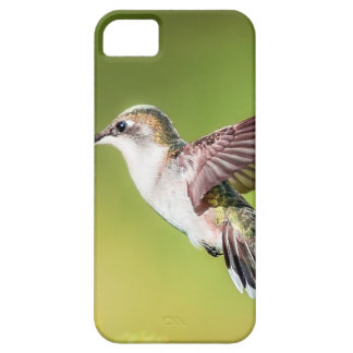 Hummingbird in flight iPhone 5 covers
