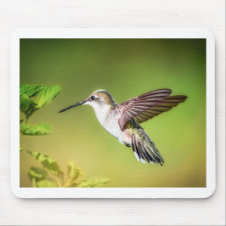 Hummingbird in flight mouse pad
