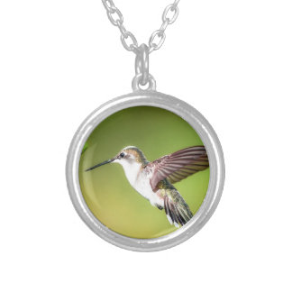 Hummingbird in flight silver plated necklace