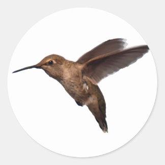 Hummingbird in Flight Sticker
