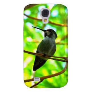 Hummingbird in profile