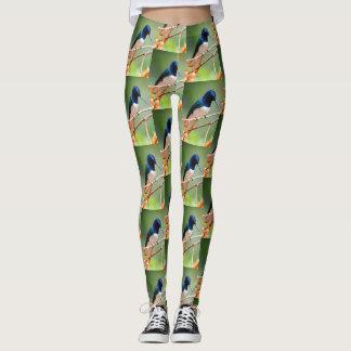 Hummingbird lover leggings