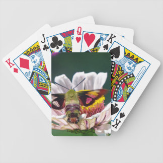 Hummingbird Moth Bicycle Playing Cards