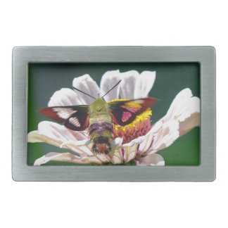 Hummingbird Moth Rectangular Belt Buckles