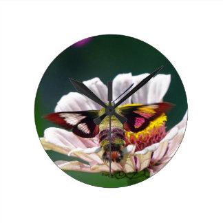 Hummingbird Moth Round Clock
