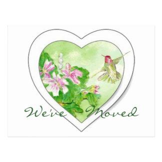 Hummingbird New Address, New Home  Postcard
