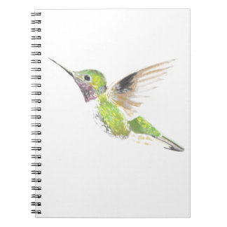 Hummingbird Notebooks