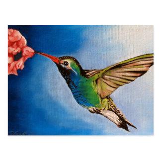 Hummingbird Oil Painting Postcard