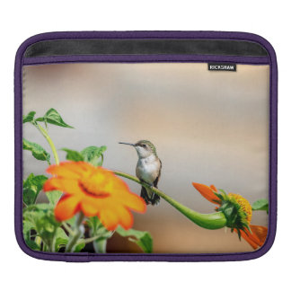 Hummingbird on a flowering plant iPad sleeve