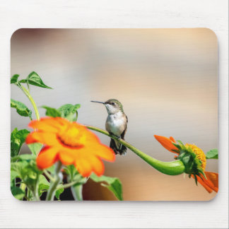 Hummingbird on a flowering plant mouse pad