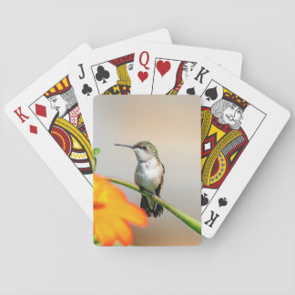 Hummingbird on a flowering plant playing cards