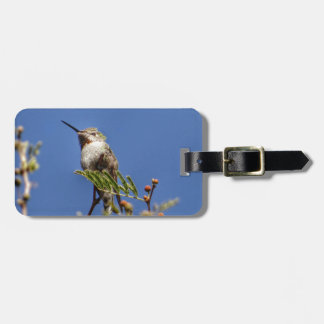 Hummingbird on Branch by SnapDaddy Bag Tag