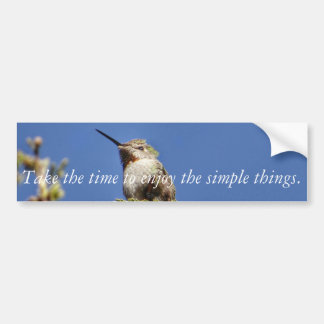Hummingbird on Branch by SnapDaddy Bumper Sticker