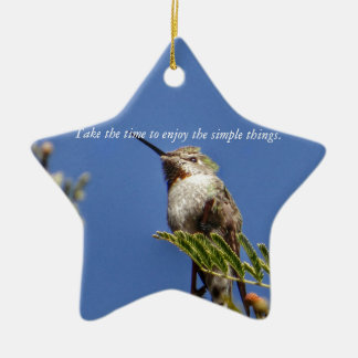 Hummingbird on Branch by SnapDaddy Ceramic Ornament