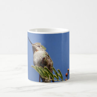 Hummingbird on Branch by SnapDaddy Coffee Mug