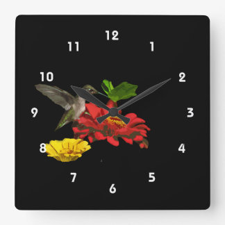 Hummingbird on Zinnias Square Wall Clock