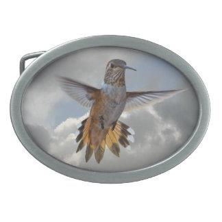 HUMMINGBIRD OVAL BELT BUCKLE