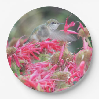 Hummingbird Photo 9 Inch Paper Plate