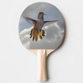 HUMMINGBIRD PING PONG PADDLE