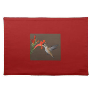 HUMMINGBIRD PLACE MATS