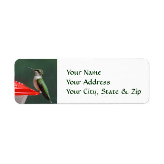 Hummingbird Portrait Custom Return Address Labels
