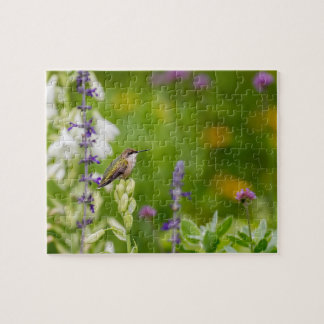 Hummingbird Rest Jigsaw Puzzle
