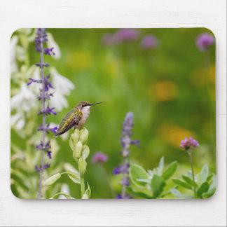 Hummingbird Rest Mouse Pad