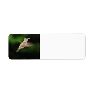 Hummingbird Return Address Labels