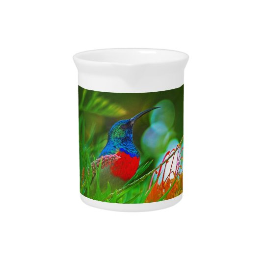 Hummingbird ruby throated pitcher