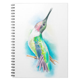 Hummingbird Singing Notebook