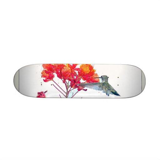 Hummingbird Skateboard