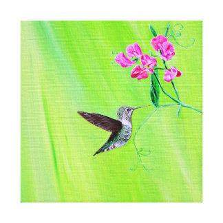 Hummingbird & Sweet pea Canvas Print