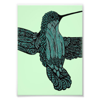 Hummingbird - Teal Photo Print