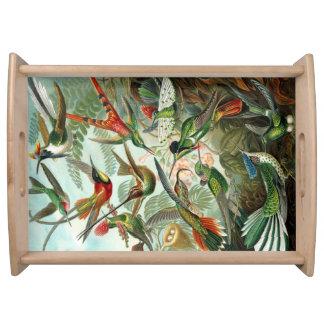 Hummingbird Tray