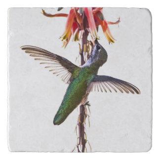 Hummingbird wings trivet