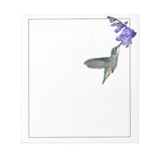 Hummingbird with Mona Lavender Notepad