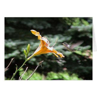 Hummingbirds 2005-0821 card