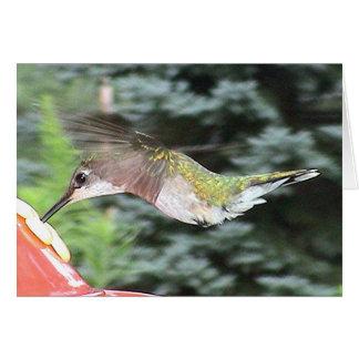 Hummingbirds 2005-0912 card