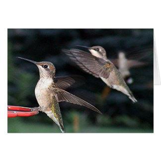 Hummingbirds 2005-0935 card