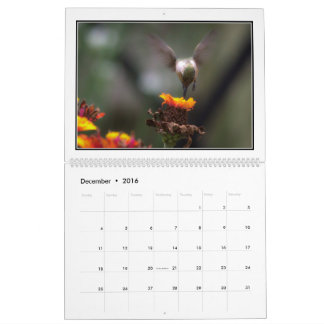 Hummingbirds 2016 Monthly Calendar By Tom Minutolo