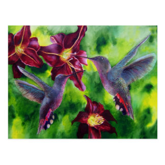 Hummingbirds and Lillies Post Card