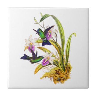 Hummingbirds and Purple Orchids Tile