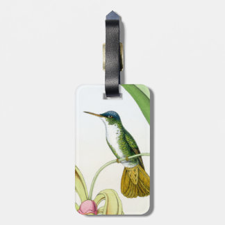 Hummingbirds Birds Flowers Floral Wildlife Animals Luggage Tag