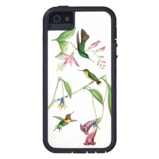 Hummingbirds Birds Wildlife Animals Flowers Floral iPhone 5 Cases