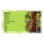 Hummingbirds Business Card