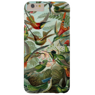 Hummingbirds by Ernst Haeckel Barely There iPhone 6 Plus Case