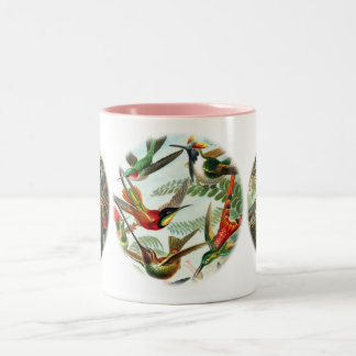 Hummingbirds by Ernst Haeckel Two-Tone Coffee Mug