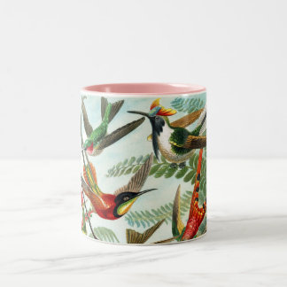 Hummingbirds by Ernst Haeckel Two-Tone Coffee Mug