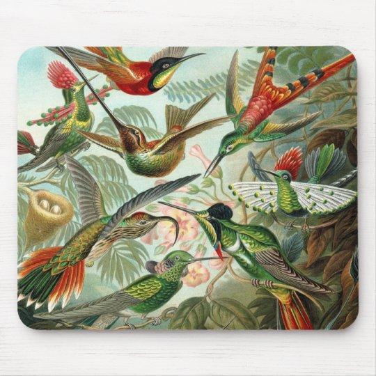 Hummingbirds Mouse Pad
