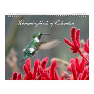 Hummingbirds of Colombia Wall Calendars
